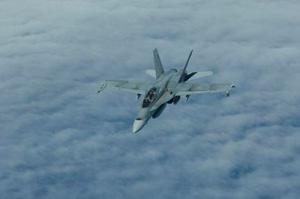 A CF-18 Hornet